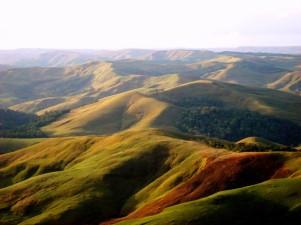 Verde, un sitio para respirar (Foto: Johan Ramírez)