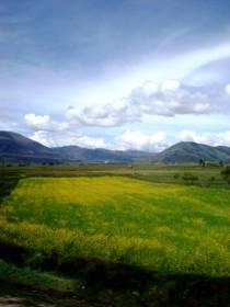 Con estas imágenes me despedía de Ecuador y entraba en Perú (Foto: Johan Ramírez)