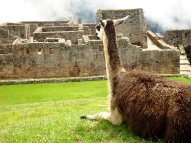 Finalmente, Machu Picchu (Foto: Johan Ramírez)