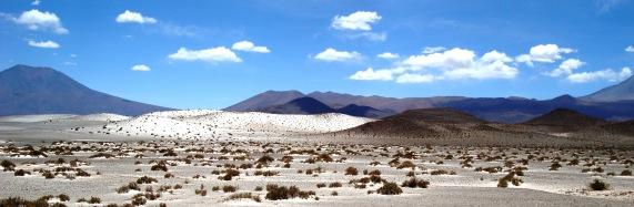 Las dunas del desierto brillan bajo el sol del mediodía (Foto: Johan Ramírez)